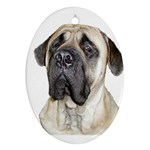 English Mastiff Ornament (Oval)