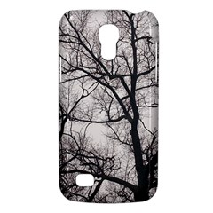 Tree Samsung Galaxy S4 Mini (gt I9190) Hardshell Case  by DmitrysTravels