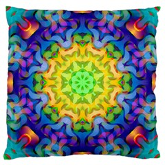 Psychedelic Abstract Large Cushion Case (two Sided)  by Colorfulplayground