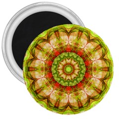 Red Green Apples Mandala 3  Button Magnet by Zandiepants