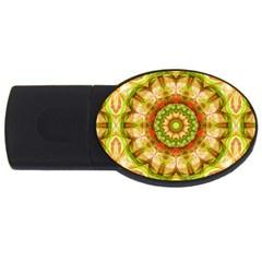 Red Green Apples Mandala 2gb Usb Flash Drive (oval) by Zandiepants