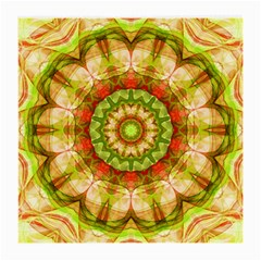 Red Green Apples Mandala Glasses Cloth (medium) by Zandiepants