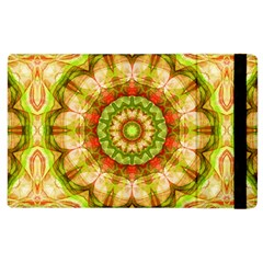 Red Green Apples Mandala Apple Ipad 3/4 Flip Case by Zandiepants