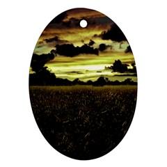 Dark Meadow Landscape  Oval Ornament