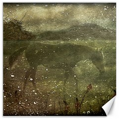 Flora And Fauna Dreamy Collage Canvas 16  X 16  (unframed) by dflcprints