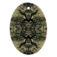 Winter Colors Collage Oval Ornament (two Sides) by dflcprints