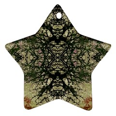 Winter Colors Collage Star Ornament (two Sides) by dflcprints