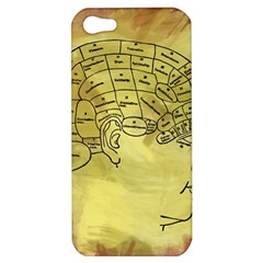 Brain Map Apple Iphone 5 Hardshell Case by StuffOrSomething