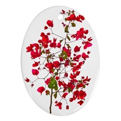 Red Petals Oval Ornament