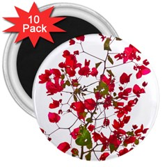 Red Petals 3  Button Magnet (10 Pack) by dflcprints