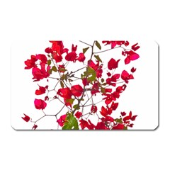 Red Petals Magnet (Rectangular) by dflcprints