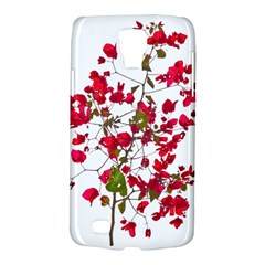 Red Petals Samsung Galaxy S4 Active (i9295) Hardshell Case by dflcprints