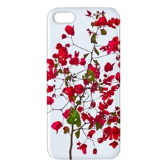 Red Petals Iphone 5s Premium Hardshell Case by dflcprints