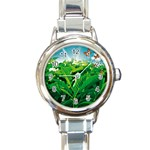 Nature Day Round Italian Charm Watch Front