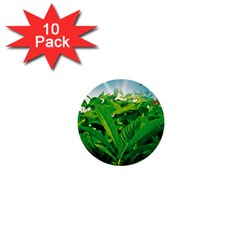Nature Day 1  Mini Button (10 Pack) by dflcprints