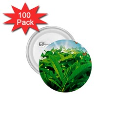 Nature Day 1 75  Button (100 Pack) by dflcprints