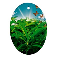Nature Day Oval Ornament (two Sides) by dflcprints