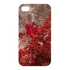 Decorative Flowers Collage Apple Iphone 4/4s Premium Hardshell Case