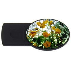 Yellow Flowers 2gb Usb Flash Drive (oval) by SaraThePixelPixie