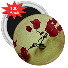 Santa Rita Flower In Warm Colors Wall Photo 3  Magnet (100 Pack) by dflcprints
