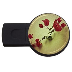 Santa Rita Flower In Warm Colors Wall Photo Usb Flash Drive Round (2 Gb) by dflcprints