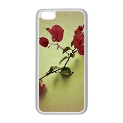 Santa Rita Flower Apple Iphone 5c Seamless Case (white) by dflcprints