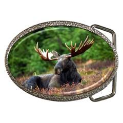 Majestic Moose Belt Buckle (oval) by StuffOrSomething