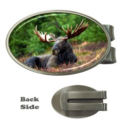 Majestic Moose Money Clip (oval) by StuffOrSomething