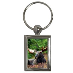 Majestic Moose Key Chain (rectangle) by StuffOrSomething