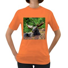 Majestic Moose Women s T Shirt (colored) by StuffOrSomething