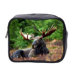 Majestic Moose Mini Travel Toiletry Bag (two Sides) by StuffOrSomething