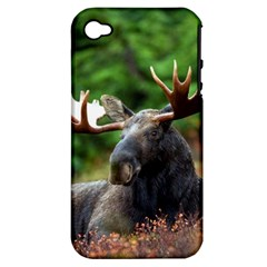 Majestic Moose Apple Iphone 4/4s Hardshell Case (pc+silicone) by StuffOrSomething