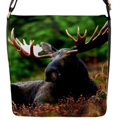 Majestic Moose Flap Closure Messenger Bag (small) by StuffOrSomething