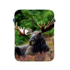 Majestic Moose Apple Ipad Protective Sleeve by StuffOrSomething