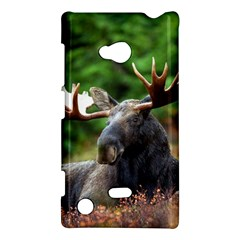 Majestic Moose Nokia Lumia 720 Hardshell Case by StuffOrSomething