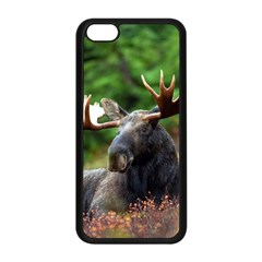 Majestic Moose Apple Iphone 5c Seamless Case (black) by StuffOrSomething