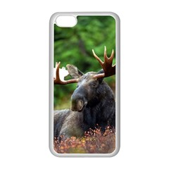 Majestic Moose Apple Iphone 5c Seamless Case (white) by StuffOrSomething