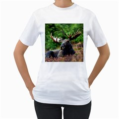 Majestic Moose Women s T Shirt (white)  by StuffOrSomething