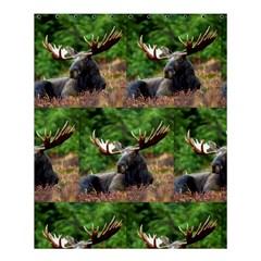 Majestic Moose Shower Curtain 60  X 72  (medium) by StuffOrSomething