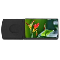 Lily 1 2GB USB Flash Drive (Rectangle) by Cardsforallseasons
