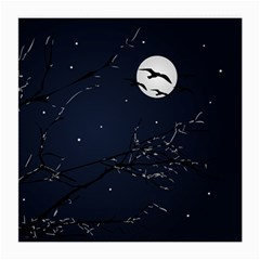 Night Birds And Full Moon Glasses Cloth (medium, Two Sided)