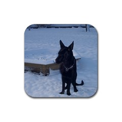 Snowy Gsd Drink Coasters 4 Pack (square) by StuffOrSomething