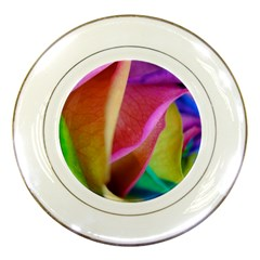Rainbow Roses 16 Porcelain Display Plate by bloomingvinedesign