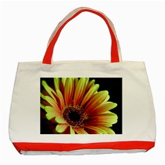 Yellow Orange Gerbera Daisy Classic Tote Bag (red) by bloomingvinedesign