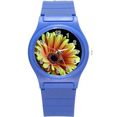 Yellow Orange Gerbera Daisy Plastic Sport Watch (small) by bloomingvinedesign