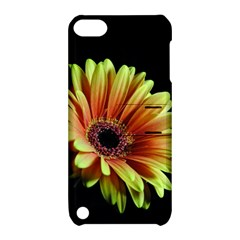 Yellow Orange Gerbera Daisy Apple Ipod Touch 5 Hardshell Case With Stand by bloomingvinedesign
