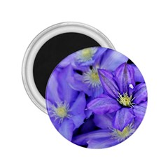 Purple Wildflowers For Fms 2 25  Button Magnet by FunWithFibro