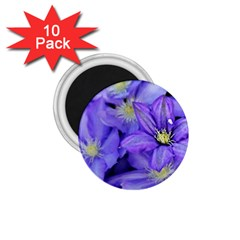 Purple Wildflowers For Fms 1 75  Button Magnet (10 Pack) by FunWithFibro