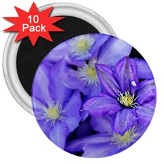 Purple Wildflowers For Fms 3  Button Magnet (10 Pack) by FunWithFibro