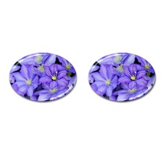 Purple Wildflowers For Fms Cufflinks (oval) by FunWithFibro